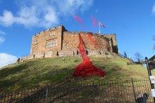 Tamworth Castle poppy